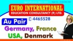 Euro International Education Consultancy P. Ltd. Logo