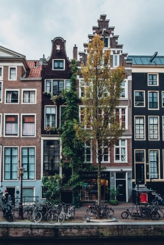 become a host family Netherlands